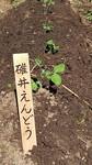 20201027活動写真_201027_27.jpg
