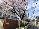 2021.3.27園芸活動_210327_0.jpg