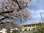 2021.3.27園芸活動_210327_11.jpg