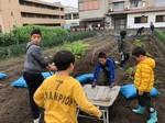 3/30  ニンジン収穫(上田さんの畑にて)_200401_0003.jpg