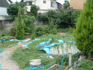 2005-7-4 073.jpg