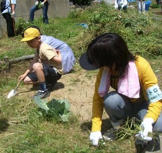2007-5-28 草抜き1.jpg